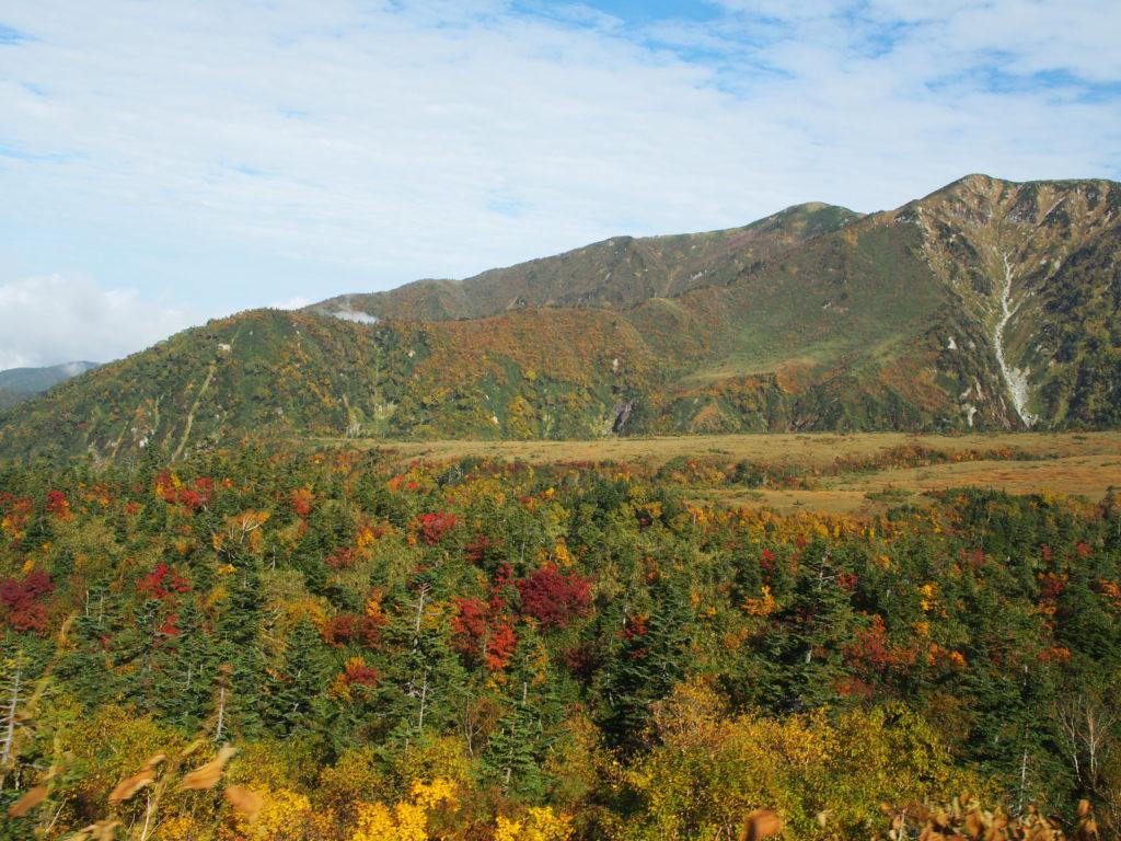 高原バスからの風景