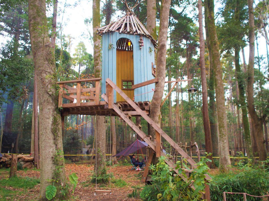 ツリーハウスと木のブランコ